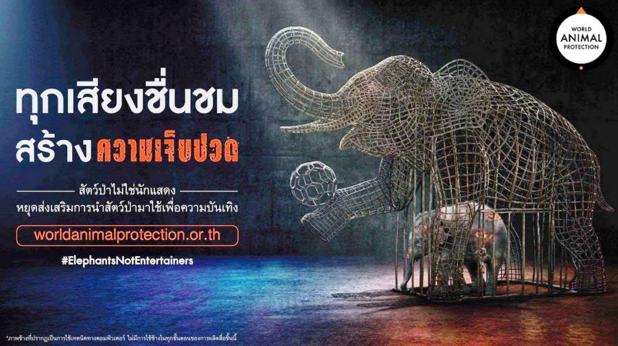 วันช้างโลก – ผุดโฆษณาหยุดใช้ช้างสร้างความบันเทิง  ชูค่านิยมท่องเที่ยวต้องไม่ทำร้ายช้างโดยองค์กรพิทักษ์สัตว์แห่งโลก